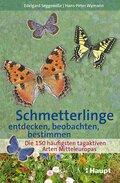 Schmetterlinge entdecken, beobachten, bestimmen