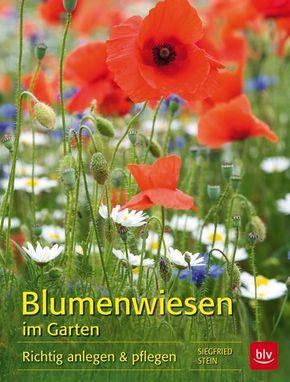 Blumenwiesen im Garten