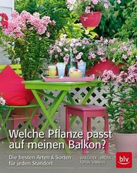 Welche Pflanze passt auf meinen Balkon?