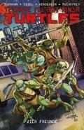 Teenage Mutant Ninja Turtles - Vier Freunde
