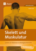 Skelett und Muskulatur