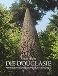 Die Douglasie