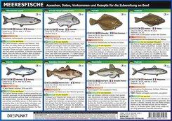 Meeresfische, 2 Info-Tafeln
