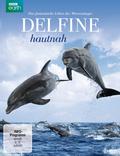 Delfine hautnah, 1 DVD