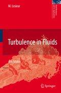 Turbulence in Fluids