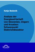 Analyse der Energiewirtschaft von Slowenien, Ungarn und Kroatien: Schwerpunkt Elektrizitätssektor