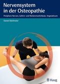 Nervensystem in der Osteopathie
