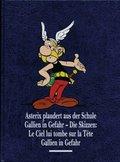 Asterix plaudert aus der Schule, Gallien in Gefahr, Gallien in Gefahr - Die Skizzen