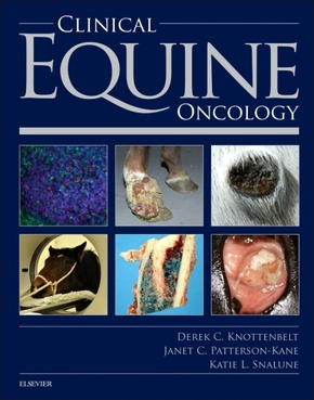 Clinical Equine Oncology