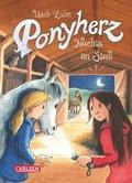 Ponyherz - Nachts im Stall