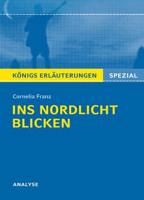 """Cornelia Franz """"Ins Nordlicht blicken"""""""