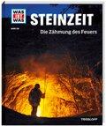 Steinzeit - Was ist was Bd.138