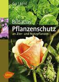 Bildatlas Pflanzenschutz an Zier- und Nutzpflanzen
