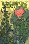 Teenage Mutant Ninja Turtles - Vier Feinde