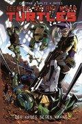 Teenage Mutant Ninja Turtles - Bd.7