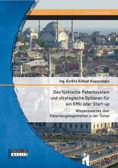 Das türkische Patentsystem und strategische Optionen für ein KMU oder Start-up: Wissenswertes über Patentangelegenheiten