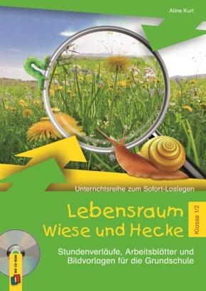 Lebensraum Wiese und Hecke - Klasse 1/2, m. CD-ROM