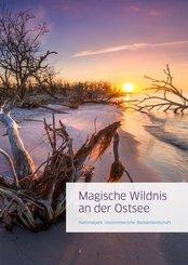 Magische Wildnis an der Ostsee