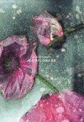 Rainflowers