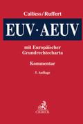 EUV/AEUV, Kommentar