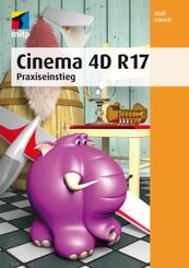 Cinema 4D R 17 - Praxiseinstieg