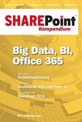 SharePoint Kompendium: Business Intelligence; Bd.11
