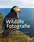 Wildlife-Fotografie