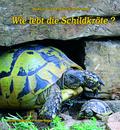 Wie lebt die Schildkröte?