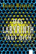 Das Labyrinth jagt dich
