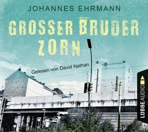 Großer Bruder Zorn, 6 Audio-CDs