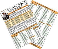 Schüssler-Salze - Der schnelle Weg zum Erfolg mit Schüssler-Kombipräparaten, Medizinische Taschen-Karte