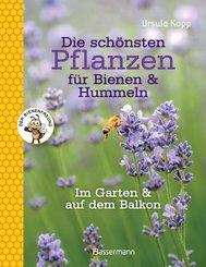 Die schönsten Pflanzen für Bienen & Hummeln