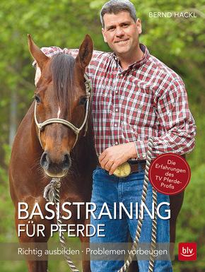 Basistraining für Pferde
