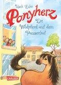 Ponyherz - Ein Wildpferd auf dem Pausenhof