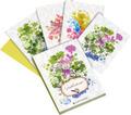 Shakespeares Gärten - Grußkarten-Set