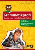 Grammatikprofi: Übungs- und Freiarbeitsmaterialien - Bd.2