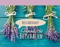 Himmlische Botschaften (Lavendel) - Bd.1