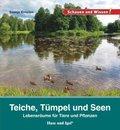 Teiche, Tümpel und Seen