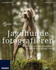 Jagdhunde fotografieren
