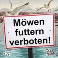 Möwen futtern verboten