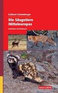 Die Säugetiere Mitteleuropas