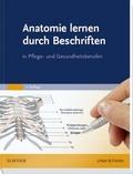 Anatomie lernen durch Beschriften in Pflege- und Gesundheitsberufen