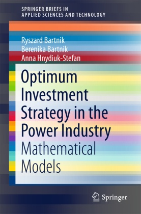 Optimum Investment Strategy in the Power Industry