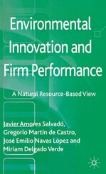 Environmental Innovation and Firm Performance