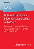 Einbau und Faltung von beta-Fass Membranproteinen in Bakterien