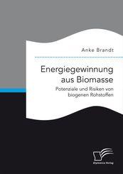 Energiegewinnung aus Biomasse. Potenziale und Risiken von biogenen Rohstoffen