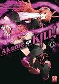 Akame ga KILL! - Bd.6