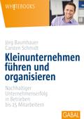 Kleinunternehmen führen und organisieren