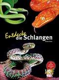 Entdecke die Schlangen