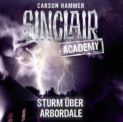 Sinclair Academy - Sturm über Arbordale, 2 Audio-CDs